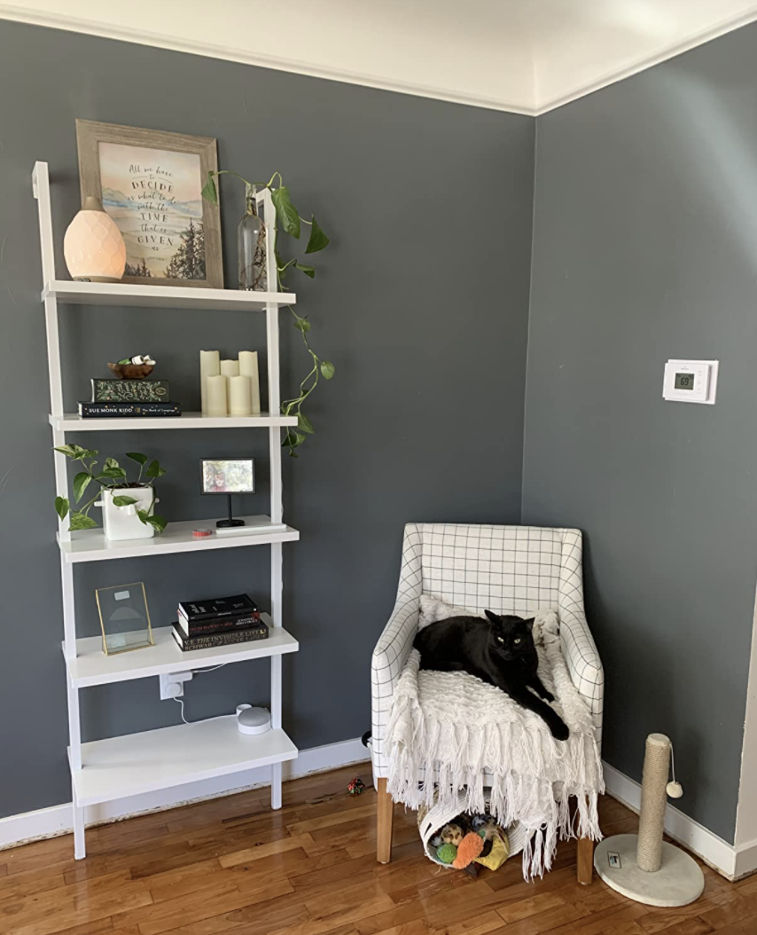 living area with as sitting chair and the ladder shelf against a wall