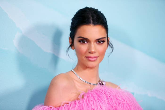 Kendall Jenner poses for the camera at a red carpet event while wearing a silver necklace and a pink fuzzy dress