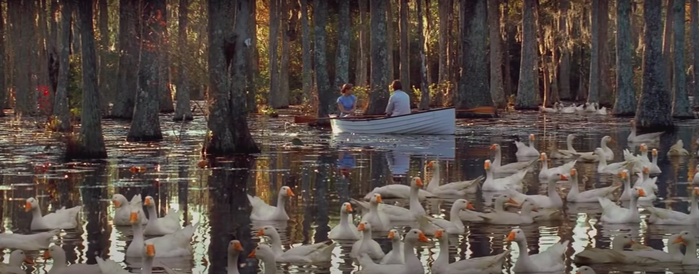 Allie and Noah on a boat with ducks around them
