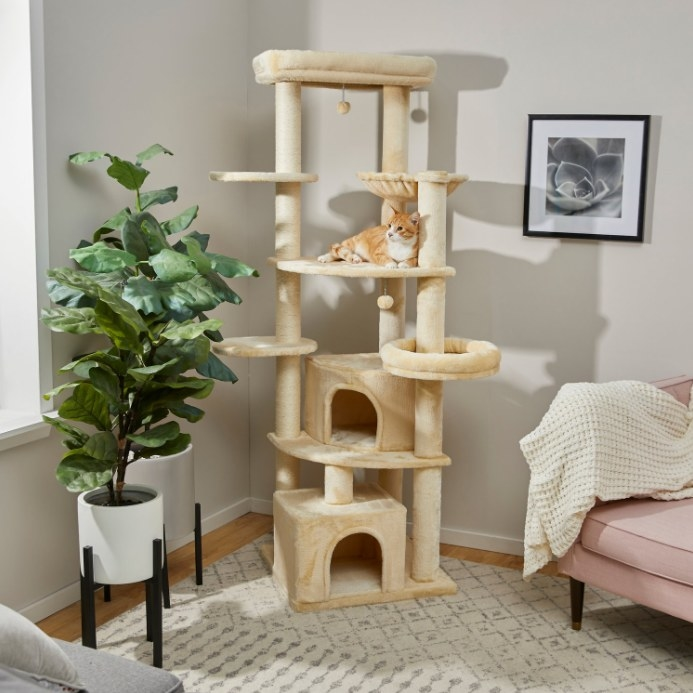 cream cat tree with a ginger cat perched on one of the landings