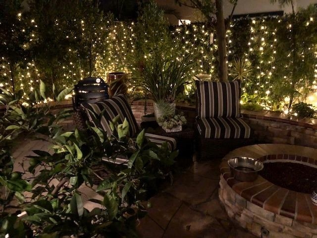 reviewer image of the their backyard with the lights hanging in the bushes