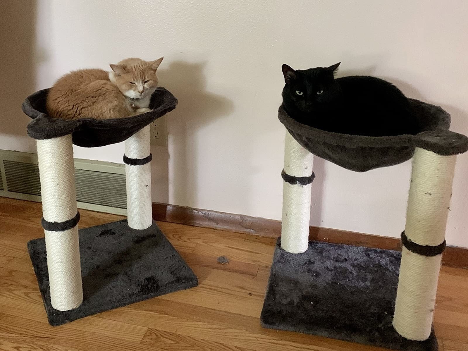 Two cats laying in two-tiered cat condo