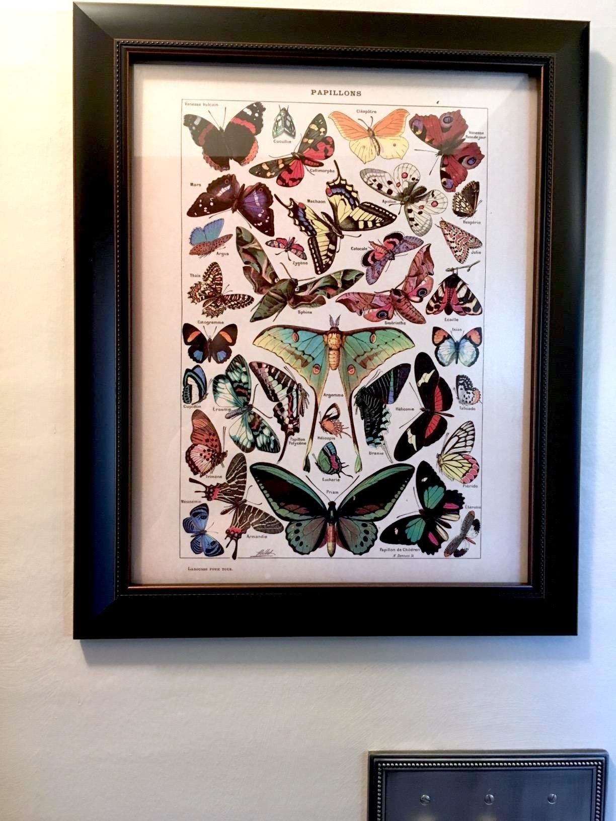 reviewer showing the butterfly print in a black frame hung up on the wall