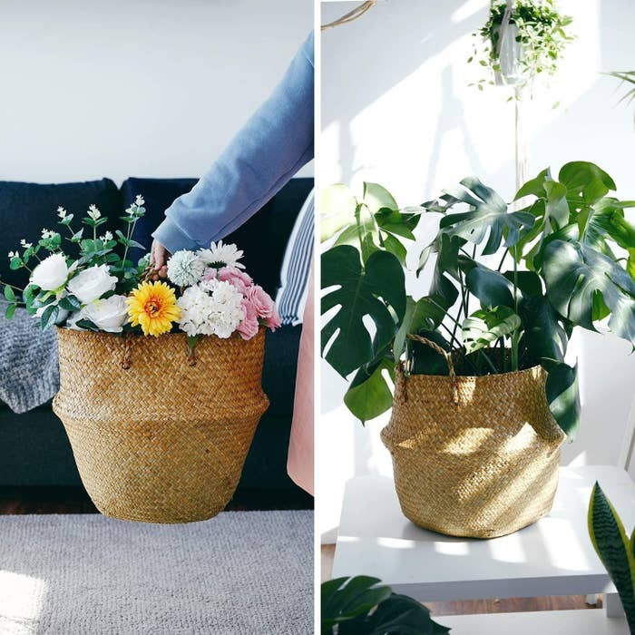 plants and flowers placed inside of basket