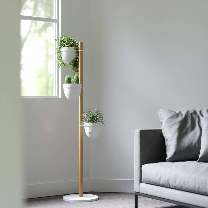 The filled plant stand beside a couch