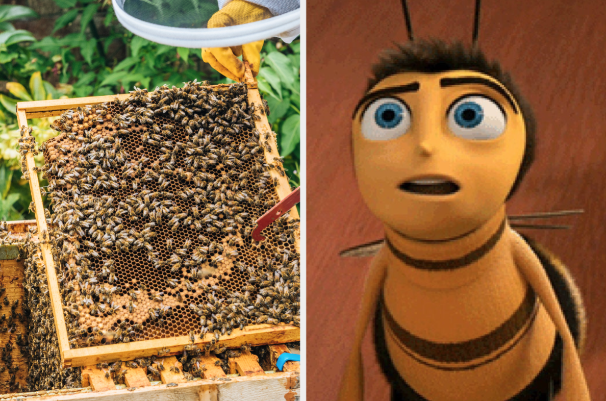 """Swarm of bees and Barry from """"Bee Movie"""""""
