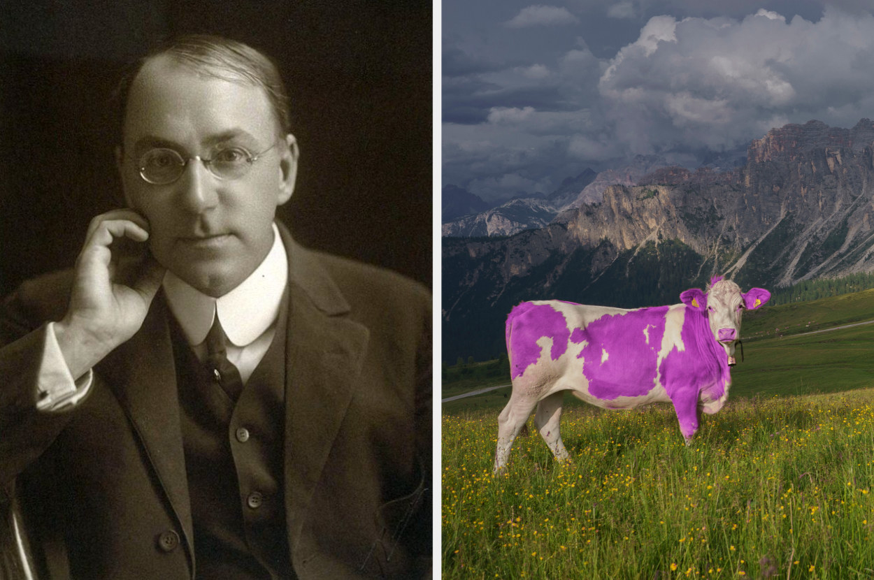 Gelett Burgess next to an image of a purple cow in a field