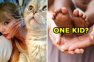 """On the left, Taylor Swift taking a selfie with her cat, Olivia, and on the right, someone holding a newborn baby's feet labeled """"one kid?"""""""