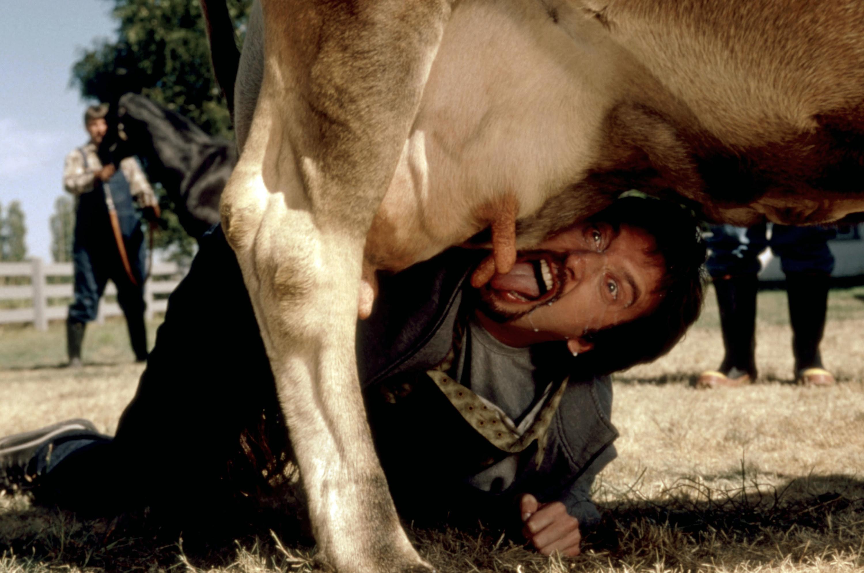 Tom Green licking a cow udder