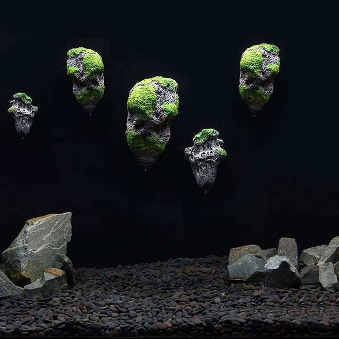 Floating rocks in an empty tank with other rocks and pebbles.