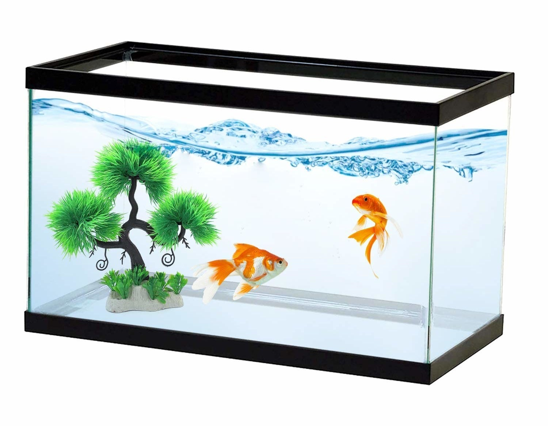 Miniature tree placed inside a fish tank.