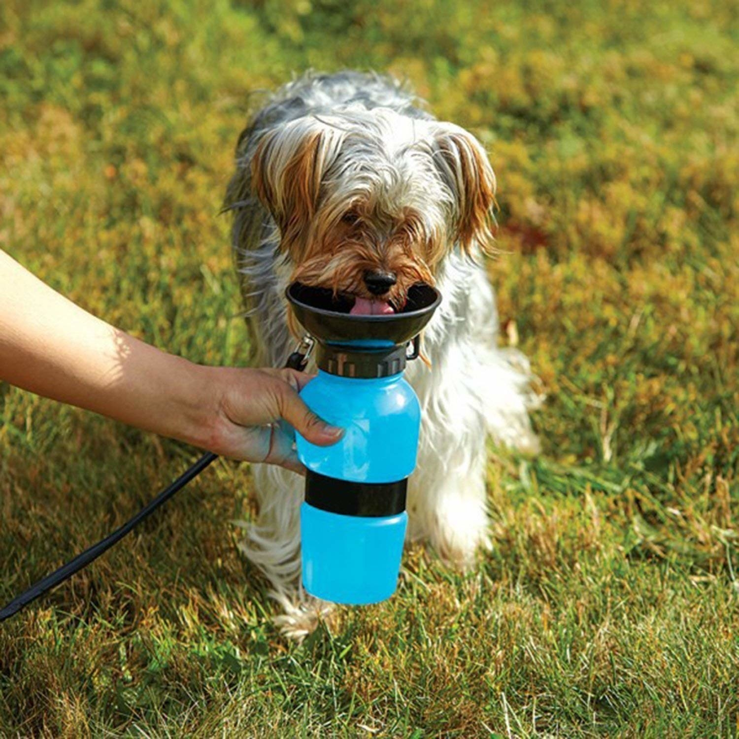 A dog drinking from a dog water bottle outside.