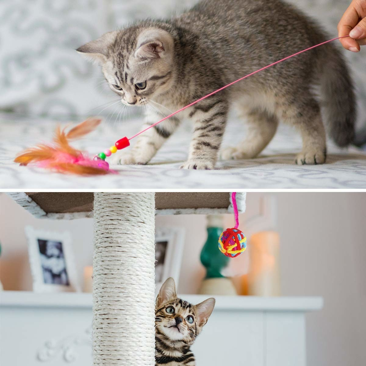 2 images showing cats playing with toys.