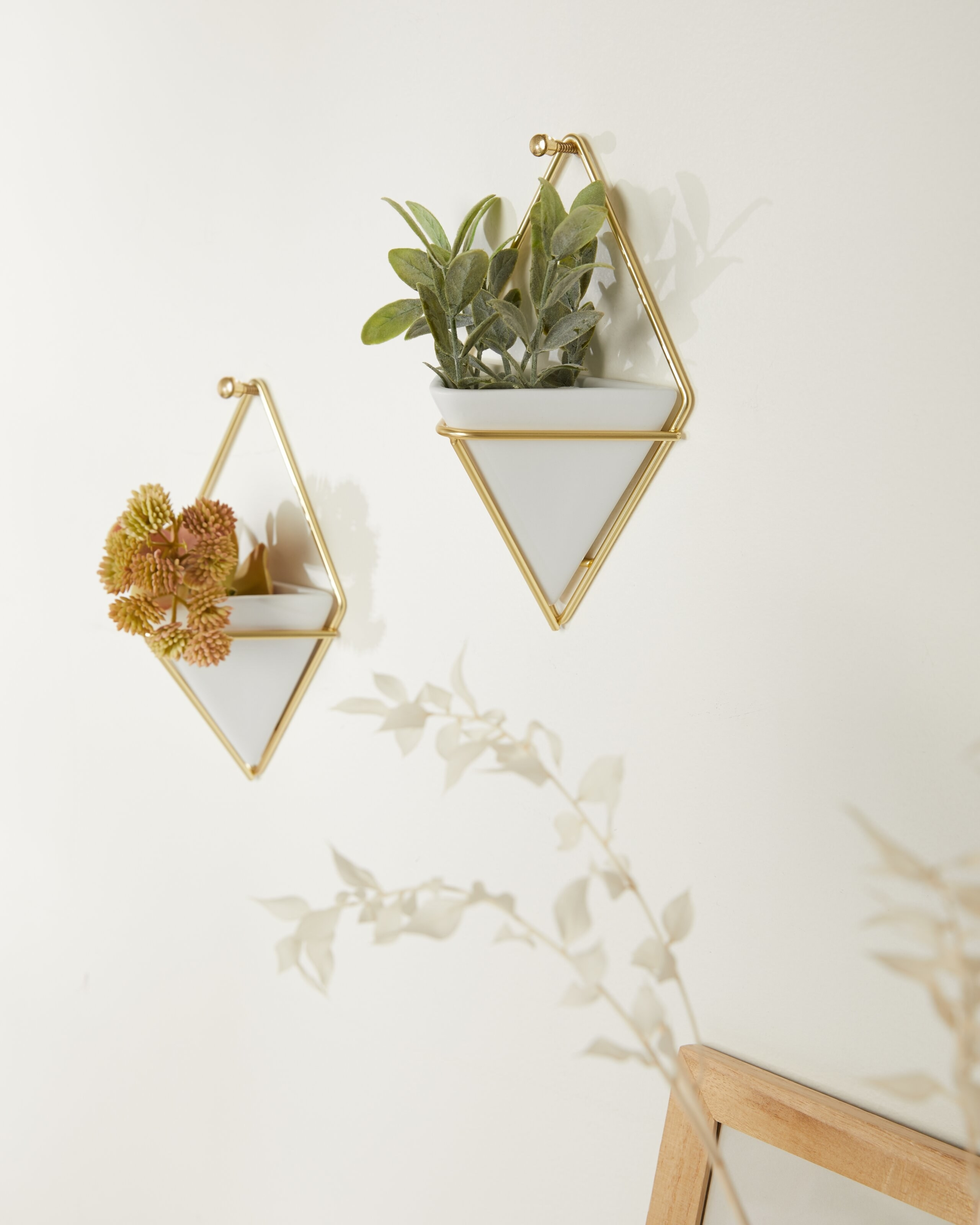 the white vessels in gold braces holding plants on a wall
