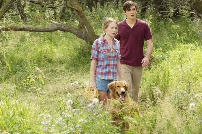Two characters look concerned while walking through a field with their dog