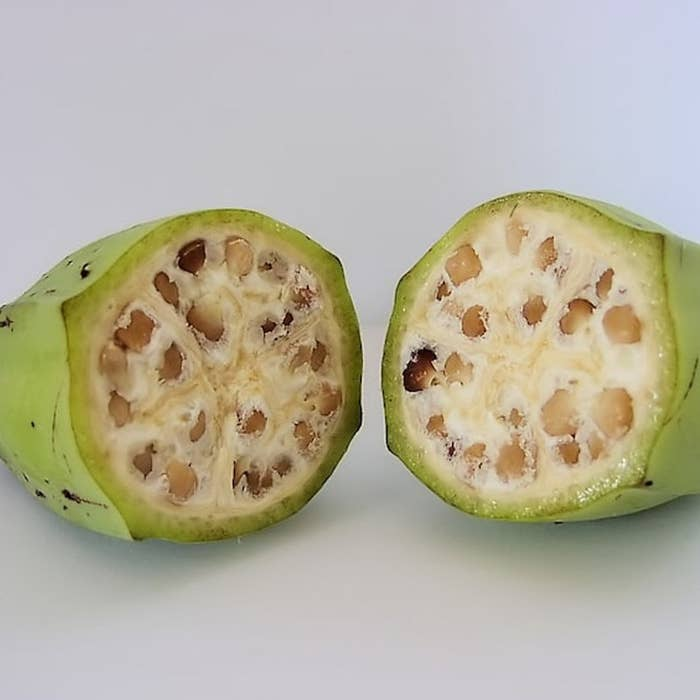 A wild banana with seeds.