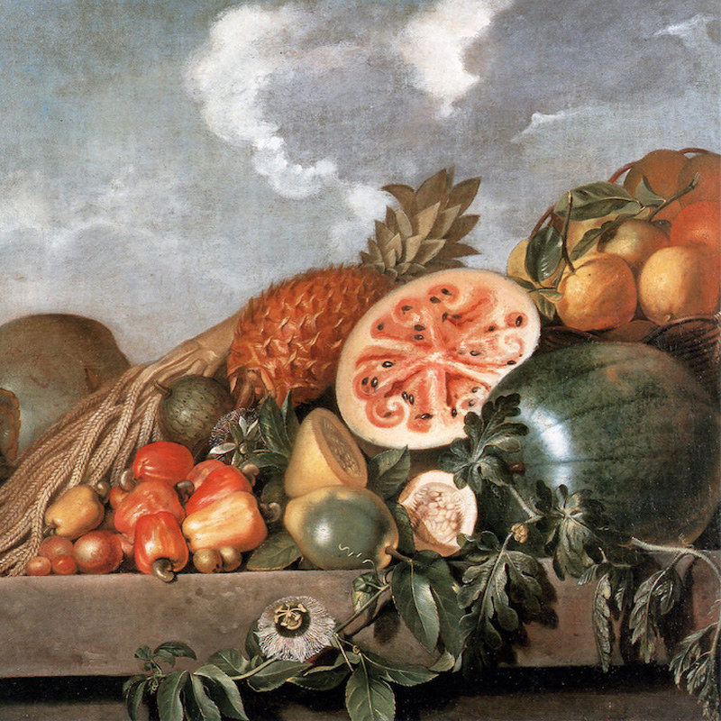A 17th century painting by Albert Eckhout.