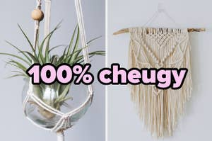 """""""100% cheugy"""" over an air plant and a lace wallhanging"""