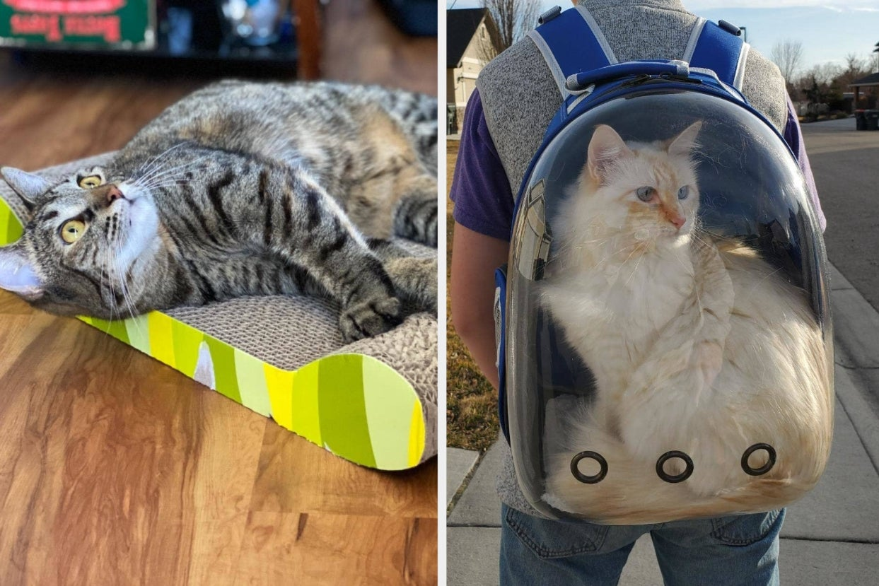 28 Pet Products From Amazon Youll Feel Smart For Owning