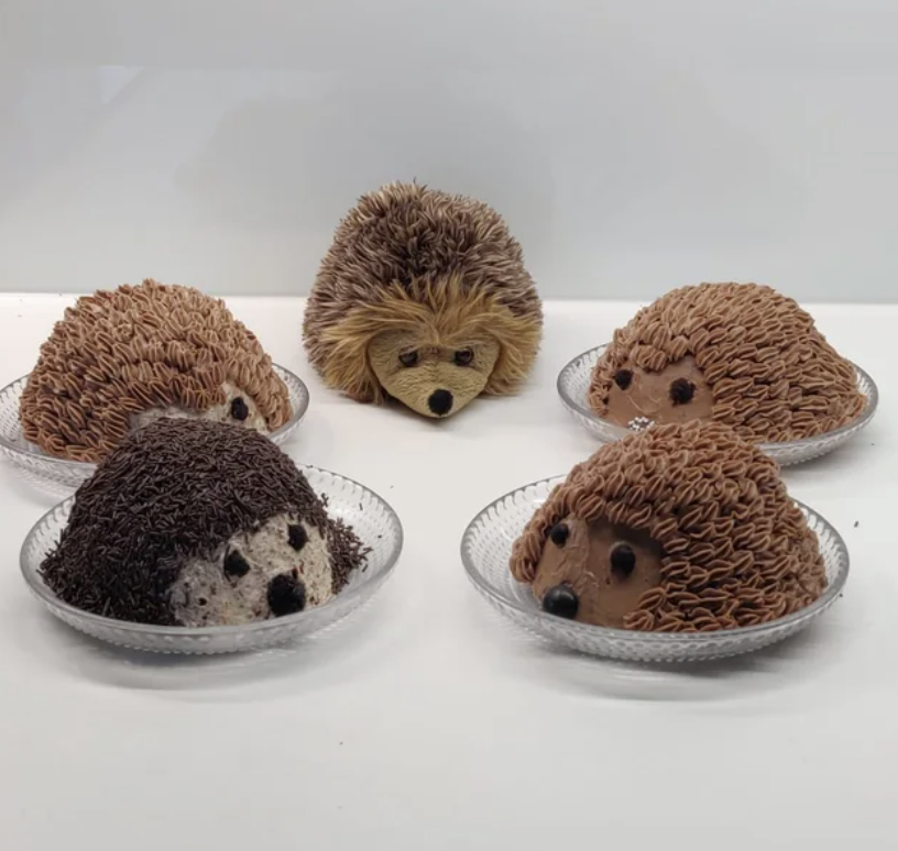 cute hedgehog cakes with fluffy frosting
