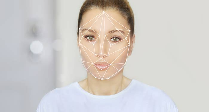 The golden ratio template on someone's face