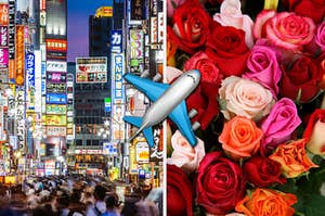 A Tokyo street is captured on the left with a pack of roses on the right and an airplane in the center