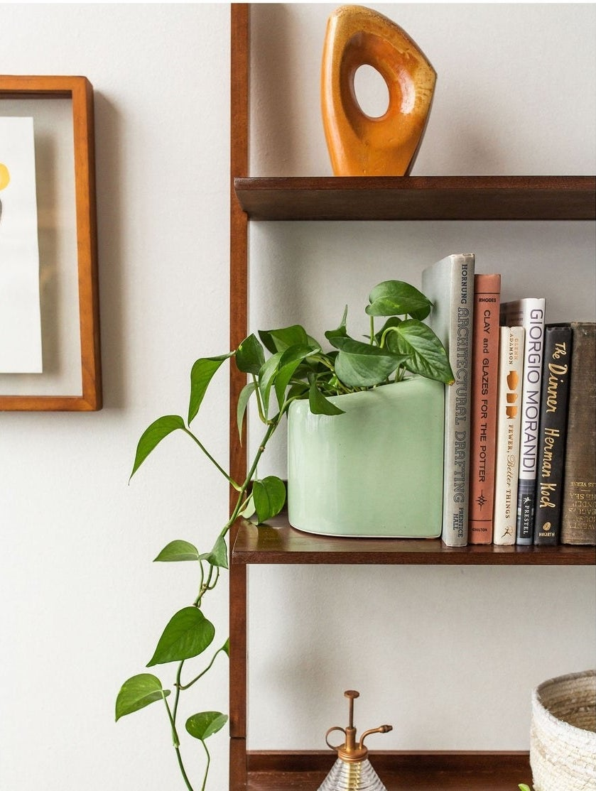 green bookend that is also a planter with a plant in it
