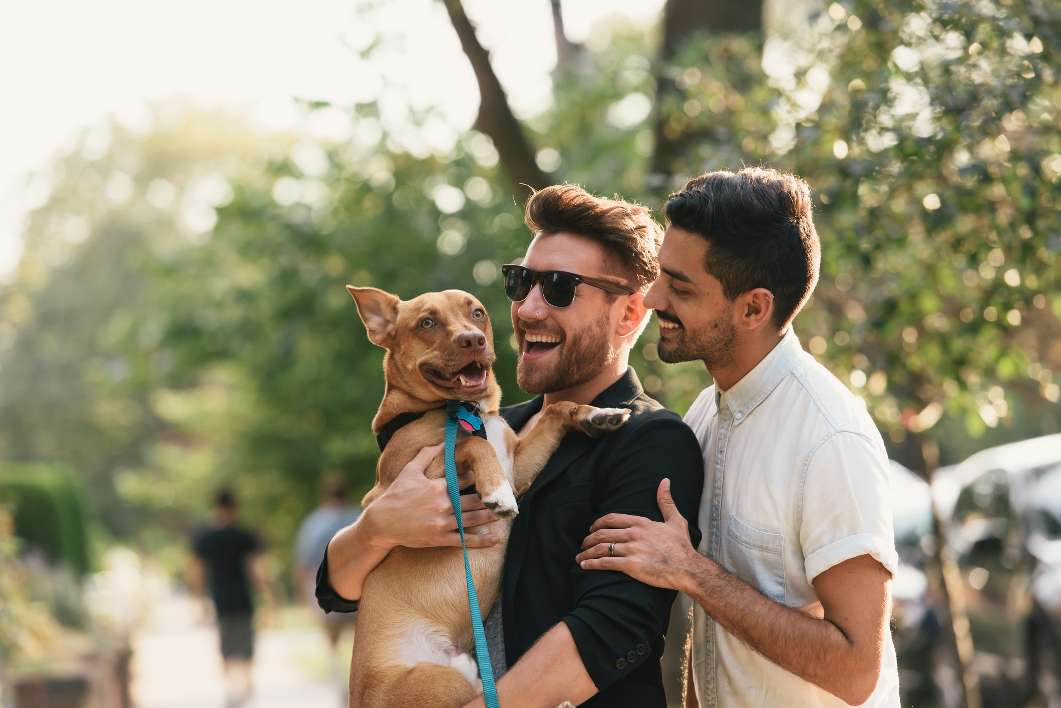 Young male couple carrying dog
