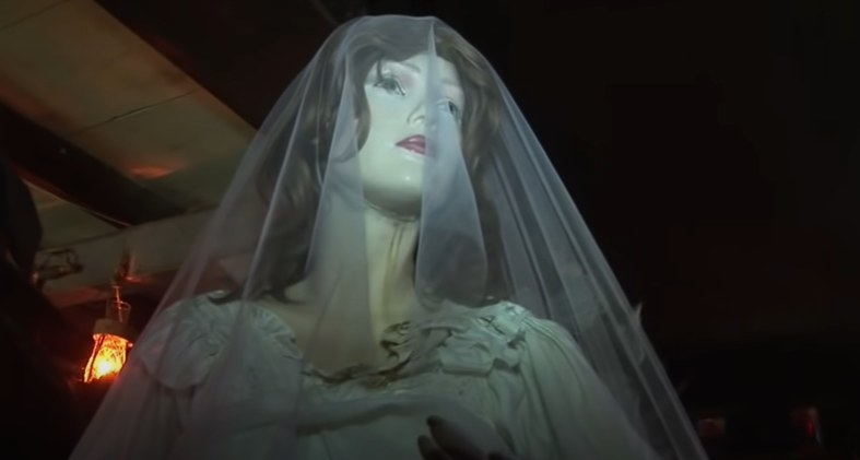 Mannequin with a white veil