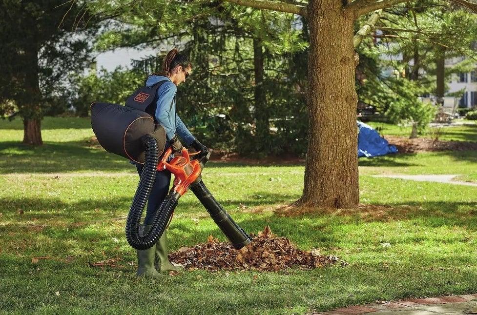 A model using the leaf vacuum