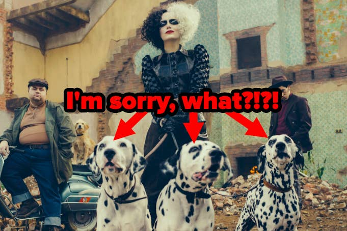 """Cruella with three Dalmatians with caption """"I'm sorry, what?!?!"""""""