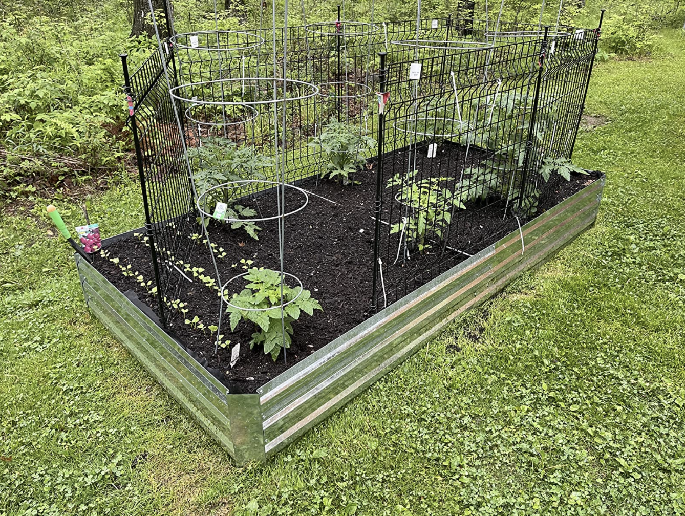 Reviewer's garden bed grows many vegetables