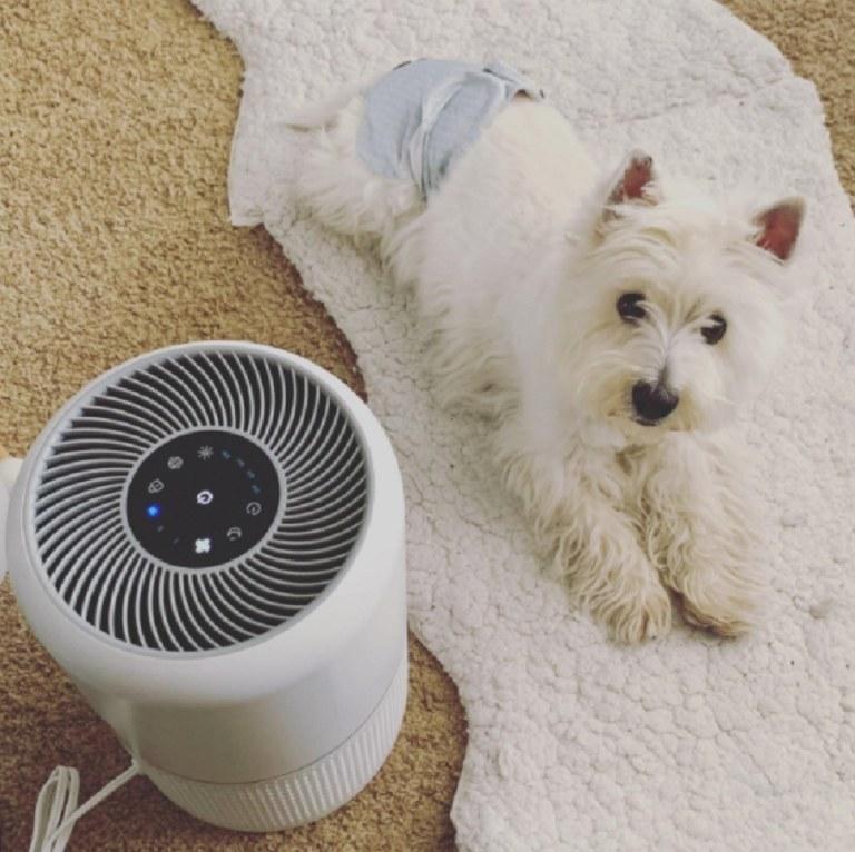 An air purfier