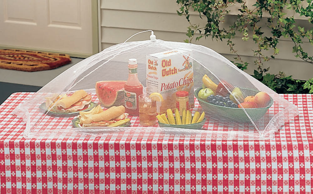 a spread of food on a picnic table covered by a mesh table umbrella