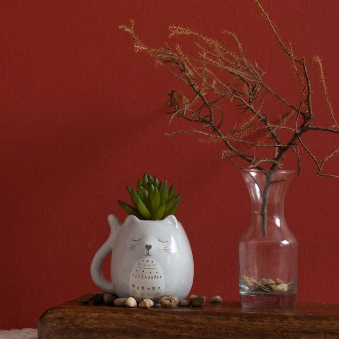 A grey cat planter with a succulent. The cat has a blissful expression on its face.