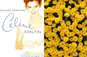 Celine Dion is on the left in an album cover with a bunch of flowers on the right
