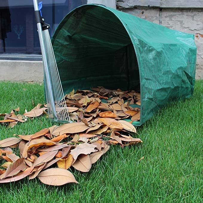 leaves being raked into the dustpan