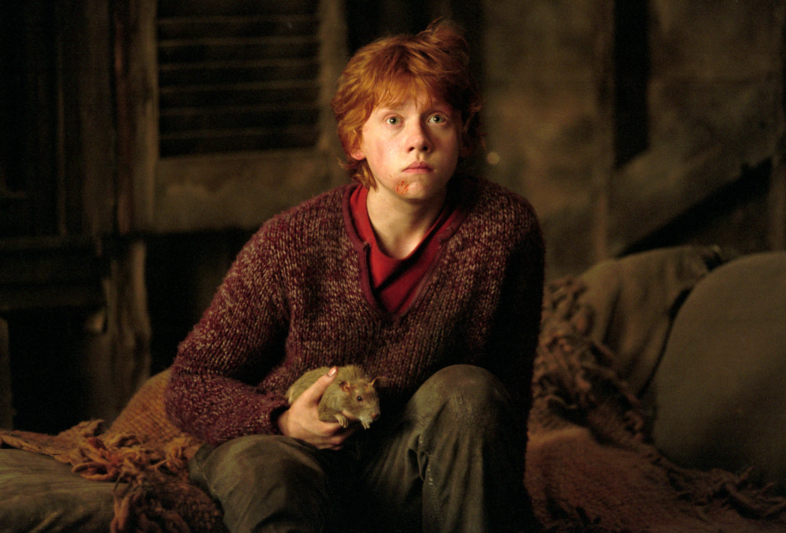 Ron in the 3rd movie