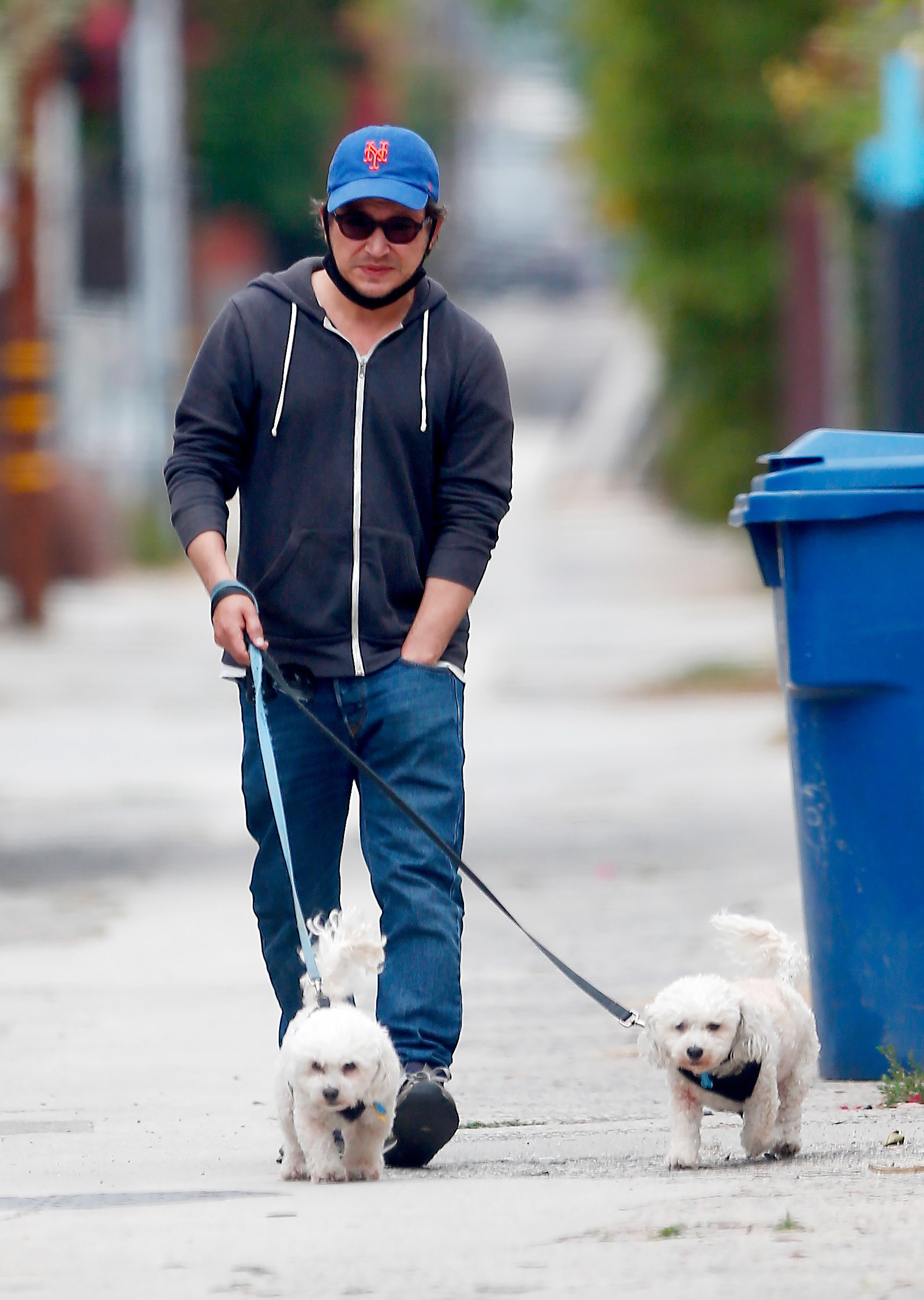 A relaxed looking Jonathan Taylor Thomas, 39, walks his two pet dogs in Hollywood