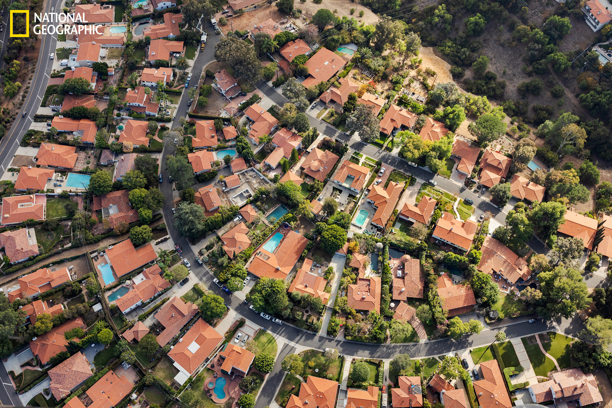 Aerial view of mansions in a tree-lined neighborhood