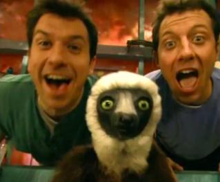 The Kratt brothers and Jovian the lemur