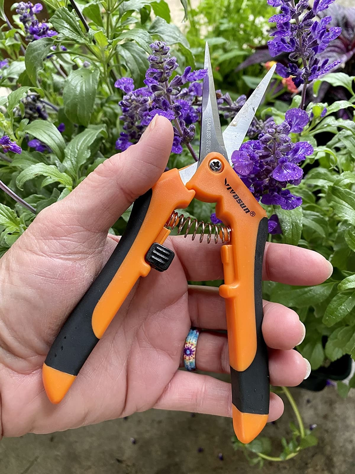 Reviewer's hand holds the orange and black shears