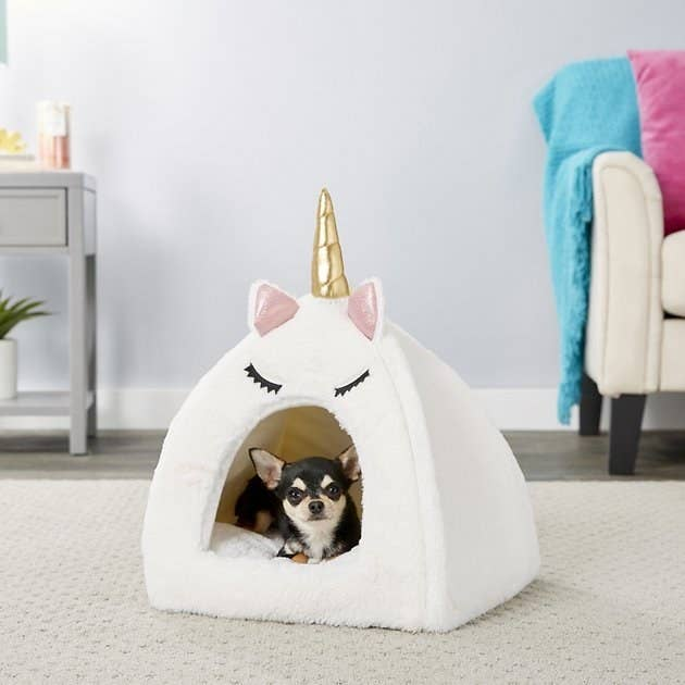 a chihuahua sitting inside the unicorn dog bed