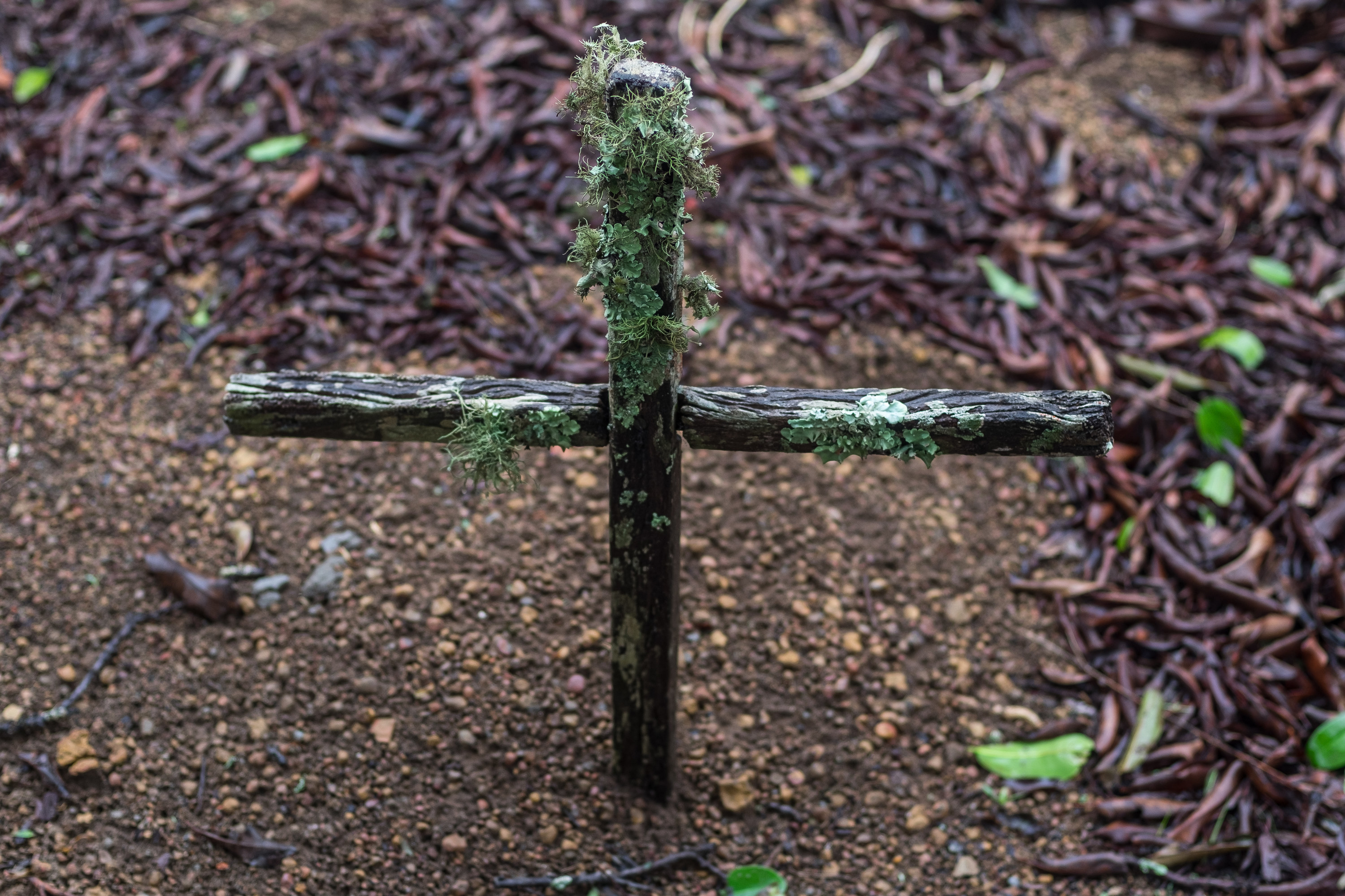 A simple small cross made of two sticks