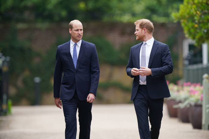 Princes William and Harry walking together