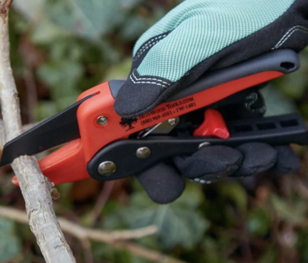 person using pruning shears to cut branch