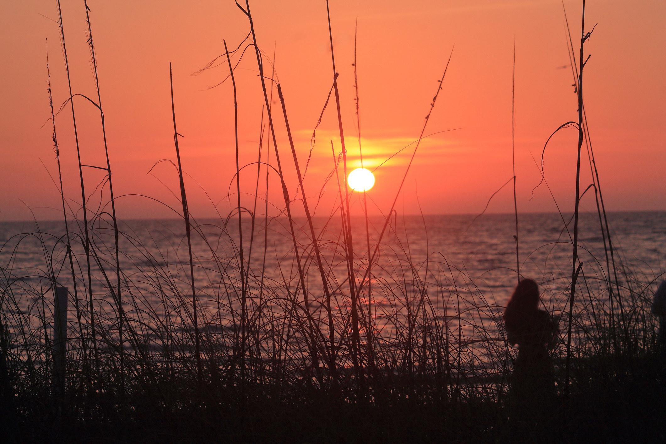 Sunset in Dunedin Florida