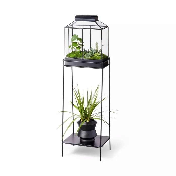 The iron and glass planter