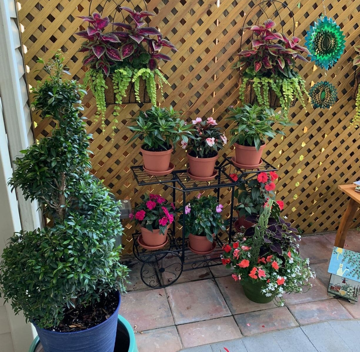 A reviewer photo of the black metal flower cart with several potted plants on the tiers