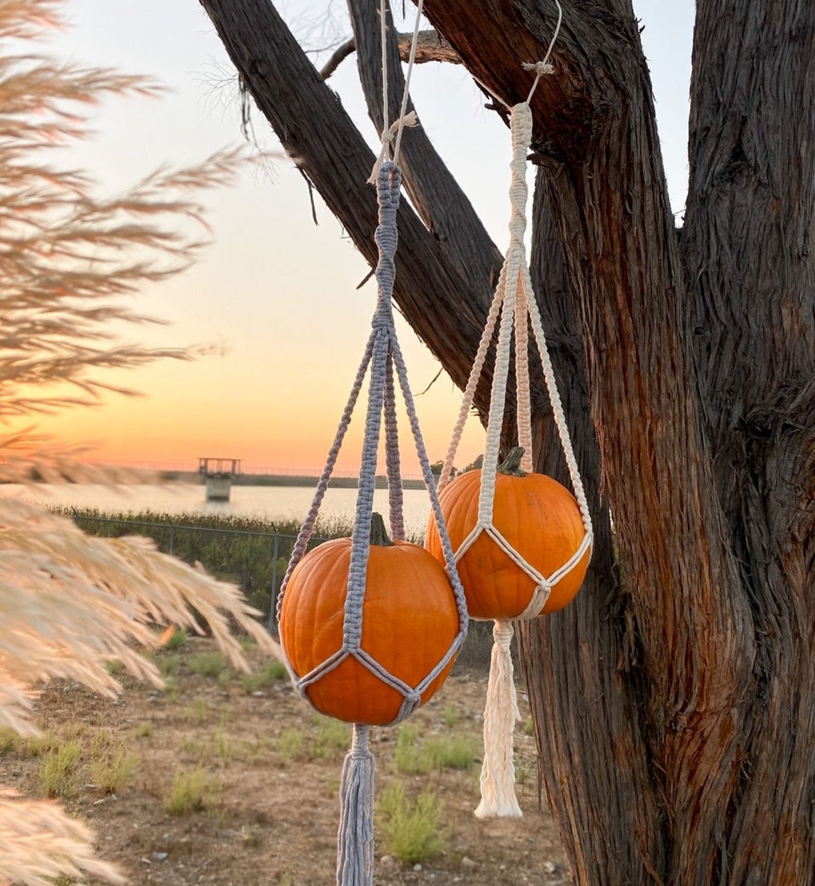 Two macrame hangers with orange pumpkins on each hanging from a tree